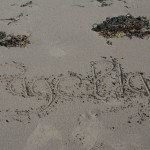 the word PagePlay written in sand